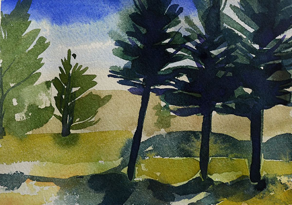 "Pine Trees 5"" x 7"" watercolor"